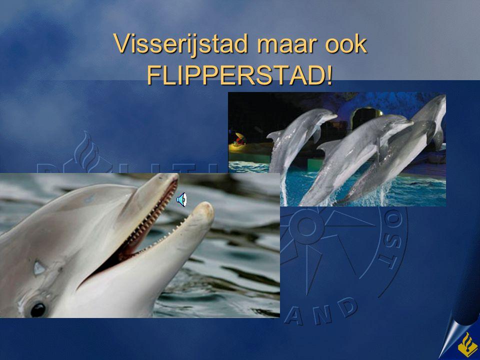 Visserijstad maar ook FLIPPERSTAD!