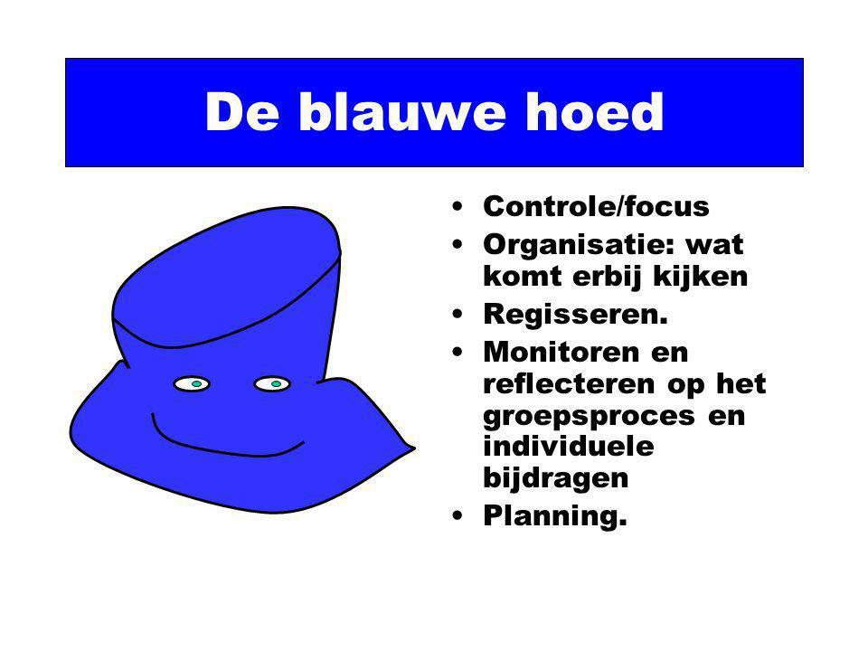 De blauwe hoed Controle/focus Organisatie: wat komt erbij kijken