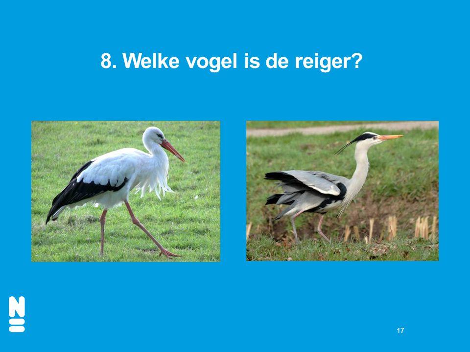 8. Welke vogel is de reiger