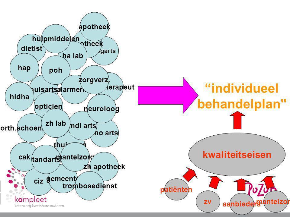 individueel behandelplan