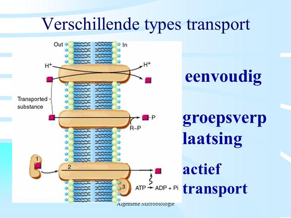 Verschillende types transport