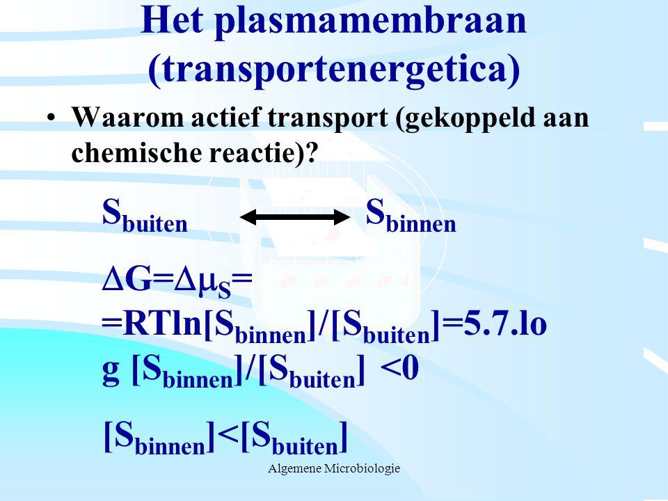 Het plasmamembraan (transportenergetica)