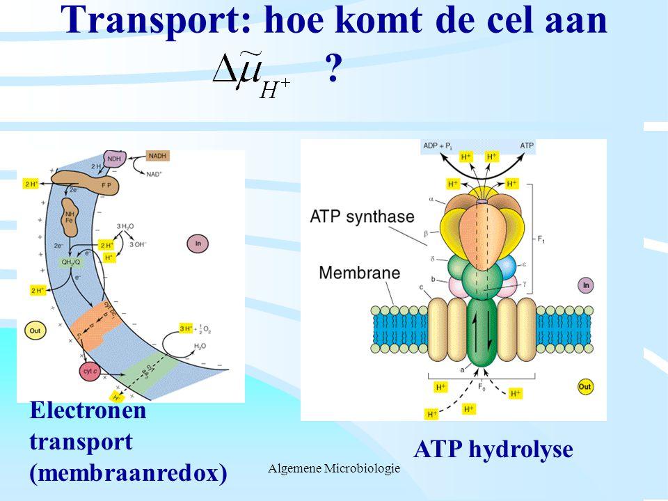 Transport: hoe komt de cel aan