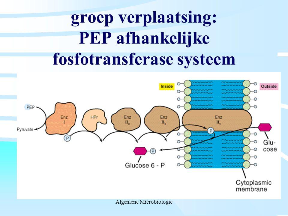 groep verplaatsing: PEP afhankelijke fosfotransferase systeem