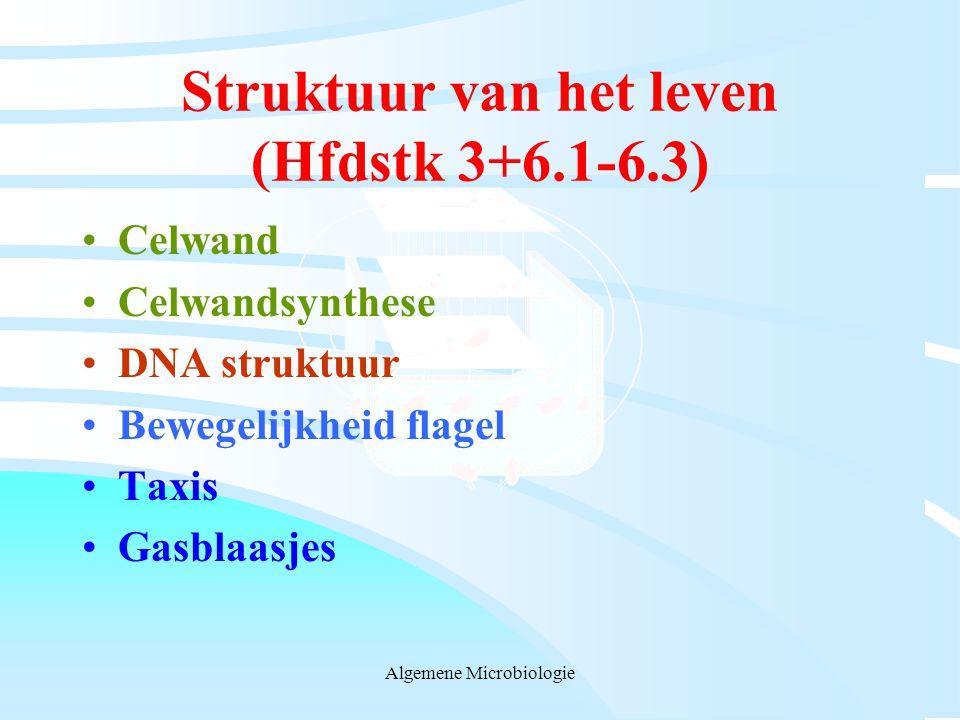 Struktuur van het leven (Hfdstk 3+6.1-6.3)