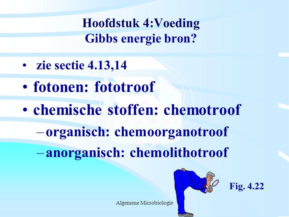 Hoofdstuk 4:Voeding Gibbs energie bron