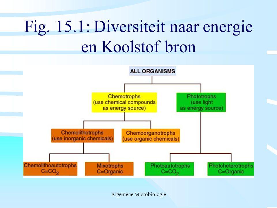 Fig. 15.1: Diversiteit naar energie en Koolstof bron