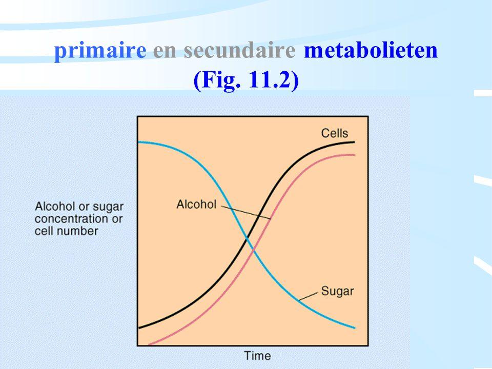 primaire en secundaire metabolieten (Fig. 11.2)