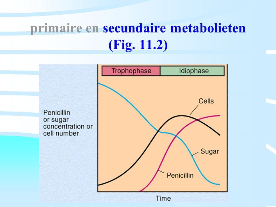 primaire en secundaire metabolieten (Fig. 11.2)