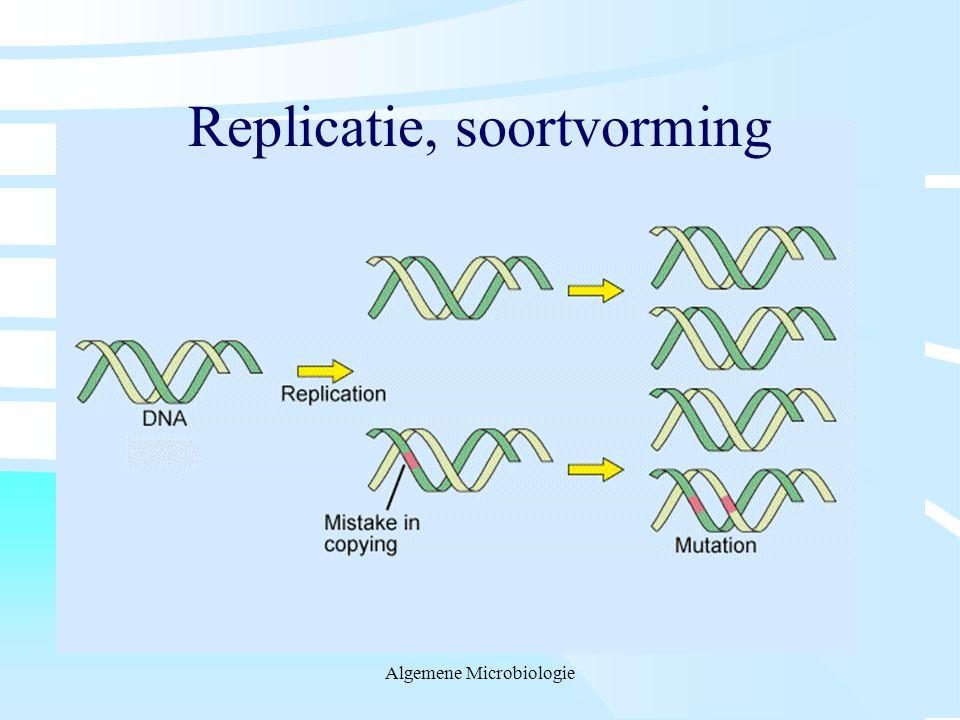 Replicatie, soortvorming