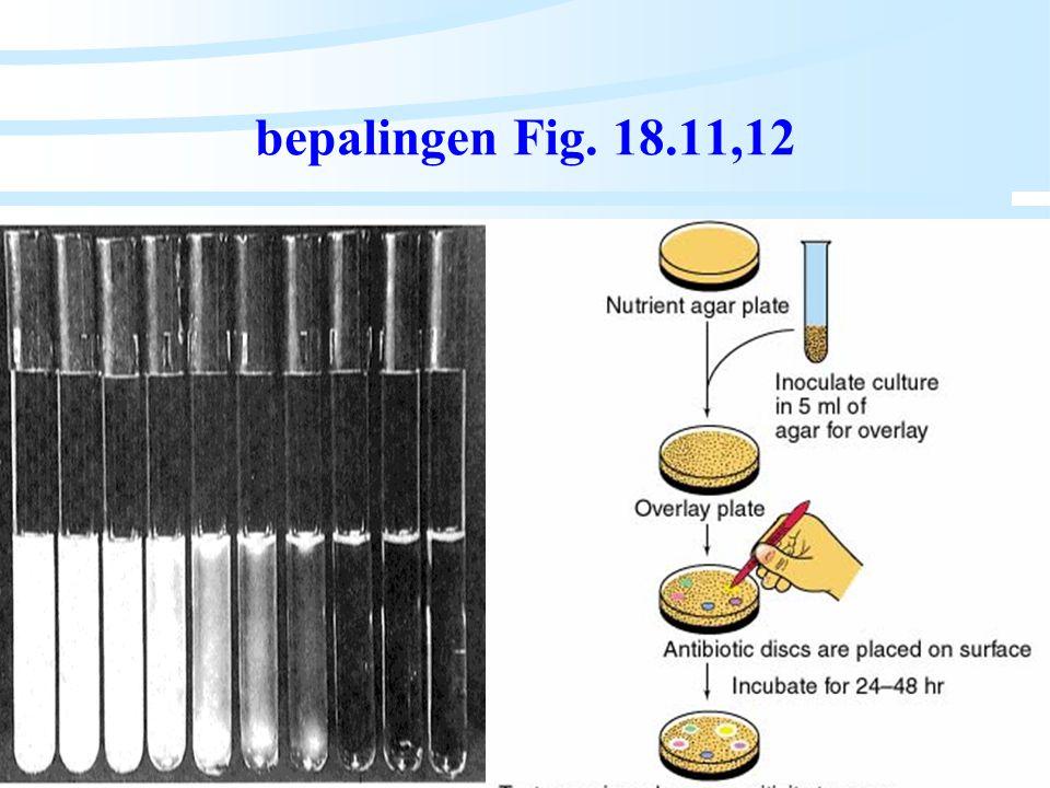 Algemene Microbiologie
