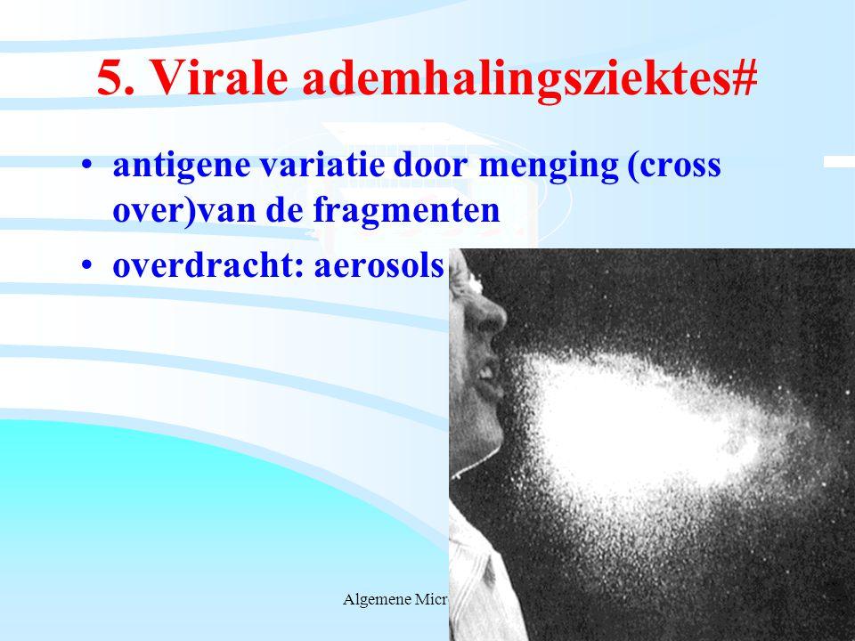5. Virale ademhalingsziektes#