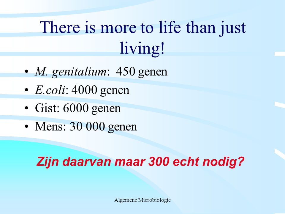 There is more to life than just living!