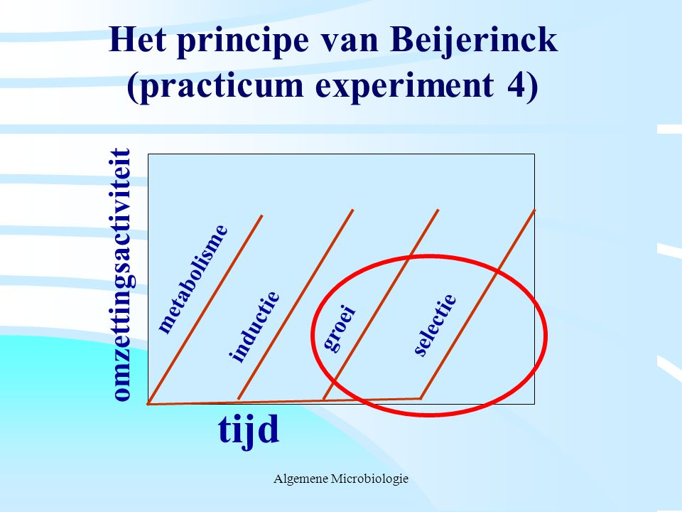 Het principe van Beijerinck (practicum experiment 4)