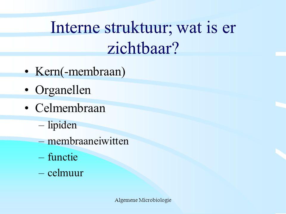 Interne struktuur; wat is er zichtbaar