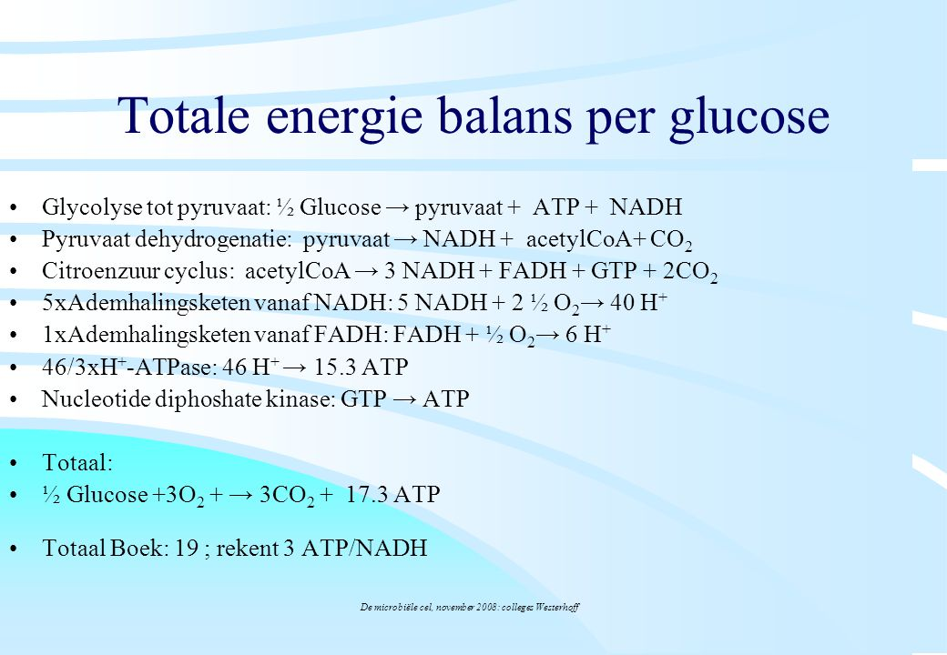 Totale energie balans per glucose