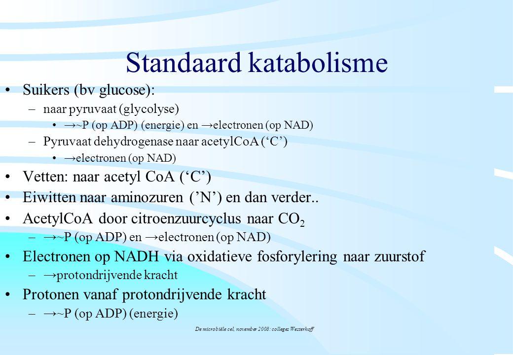 Standaard katabolisme