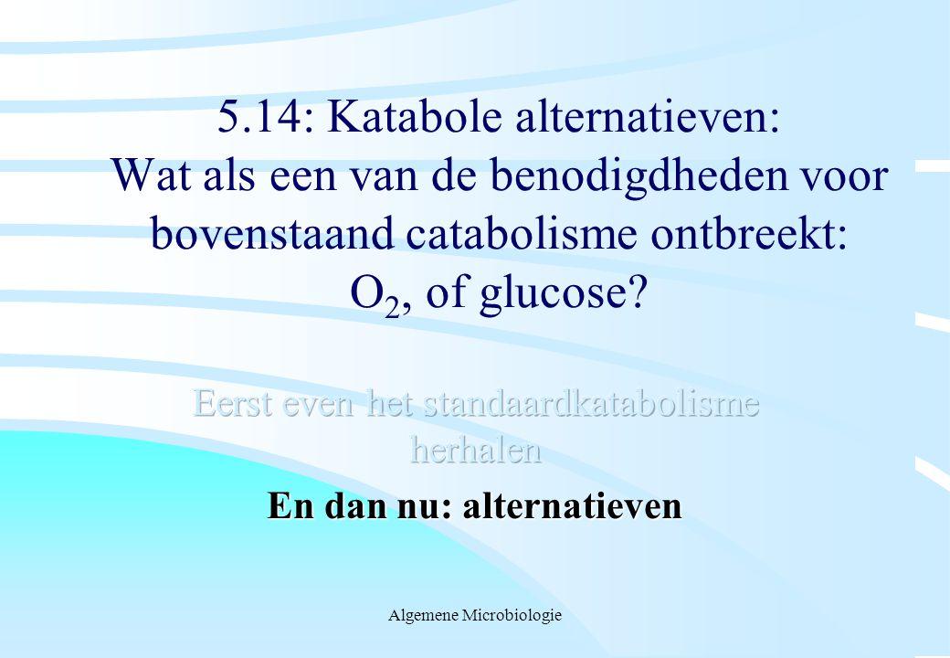 Eerst even het standaardkatabolisme herhalen En dan nu: alternatieven