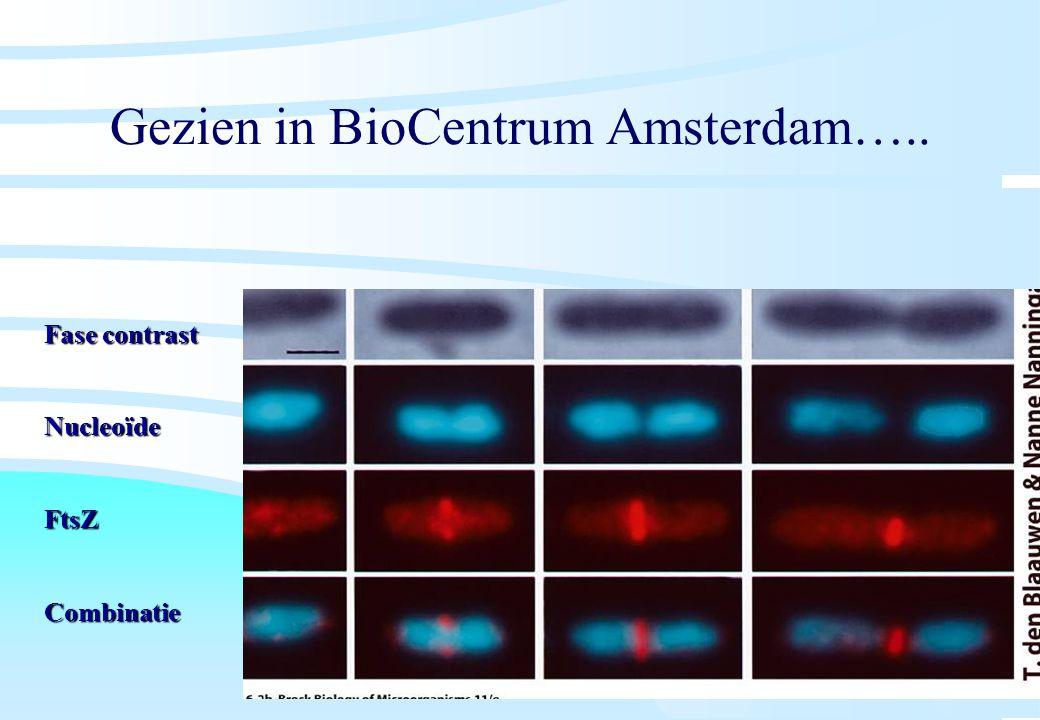 Gezien in BioCentrum Amsterdam…..