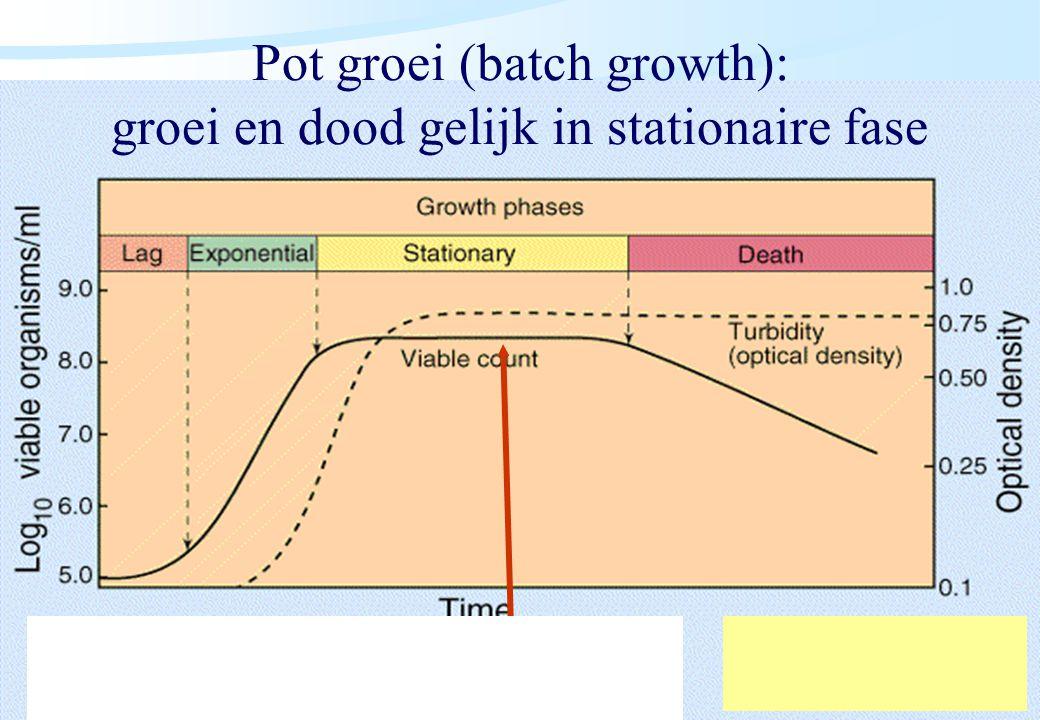Pot groei (batch growth): groei en dood gelijk in stationaire fase