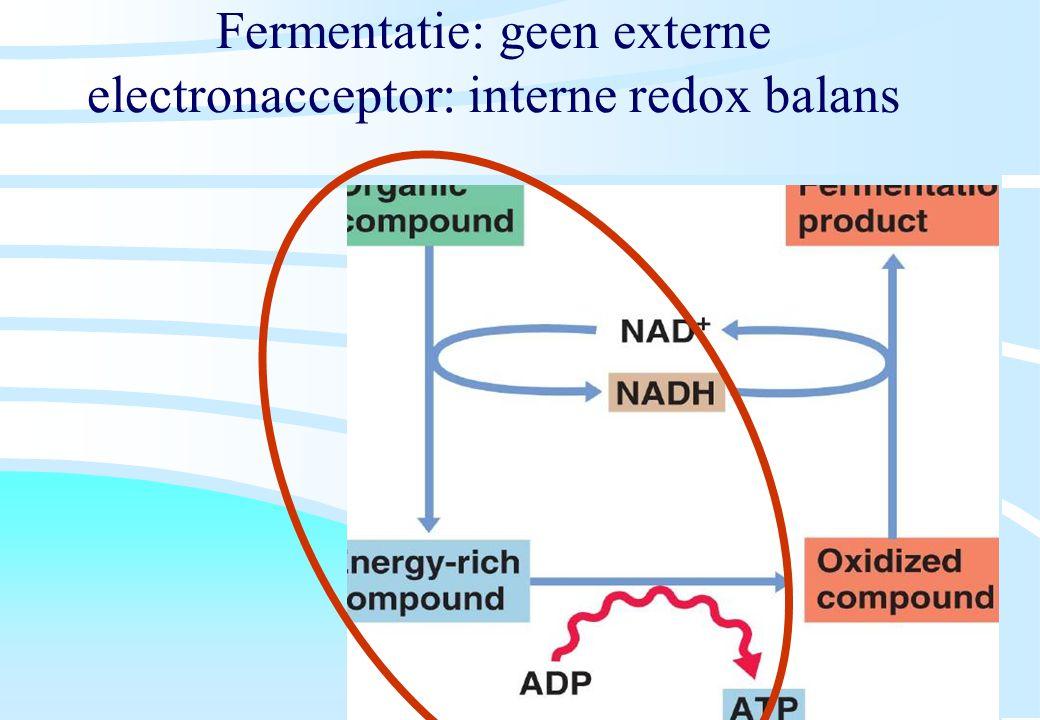 Fermentatie: geen externe electronacceptor: interne redox balans