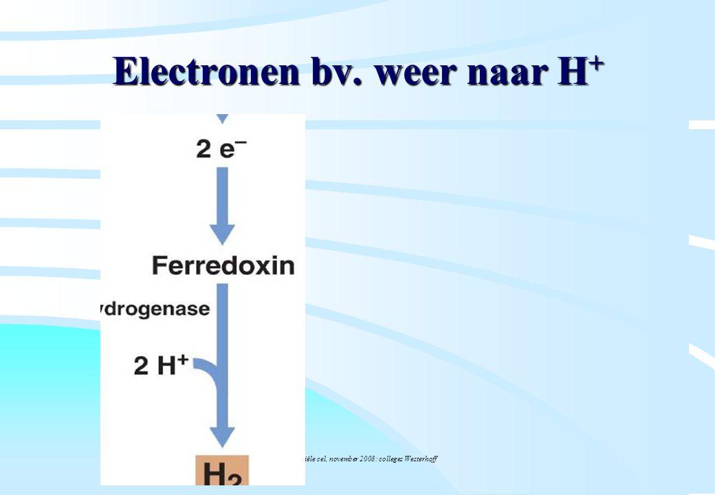 Electronen bv. weer naar H+