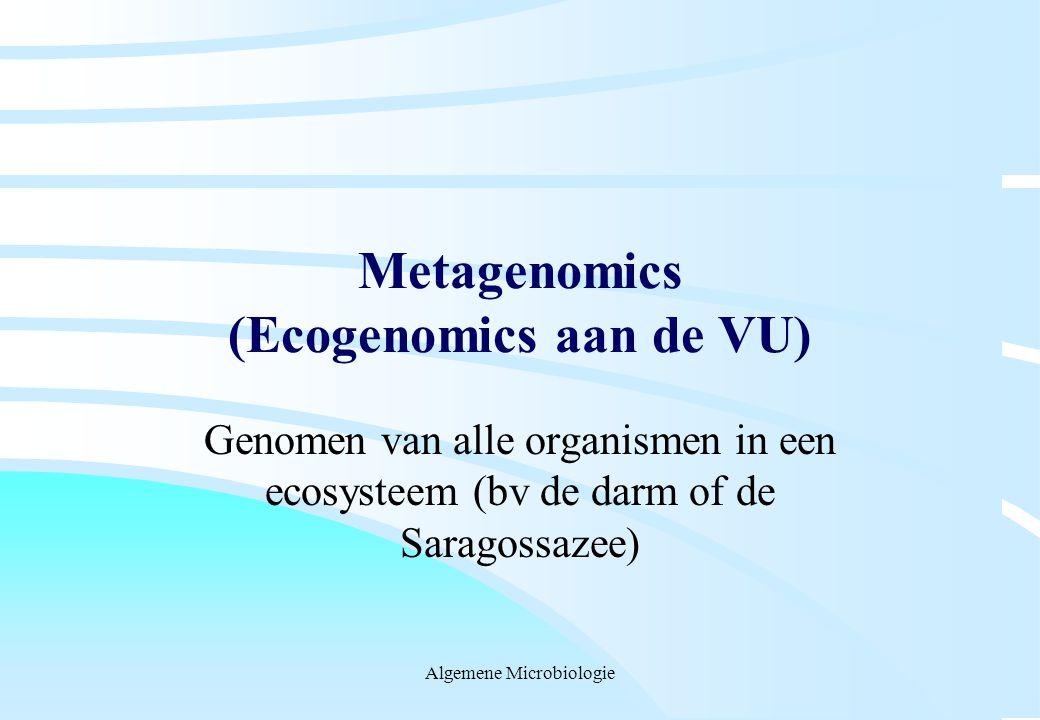 Metagenomics (Ecogenomics aan de VU)