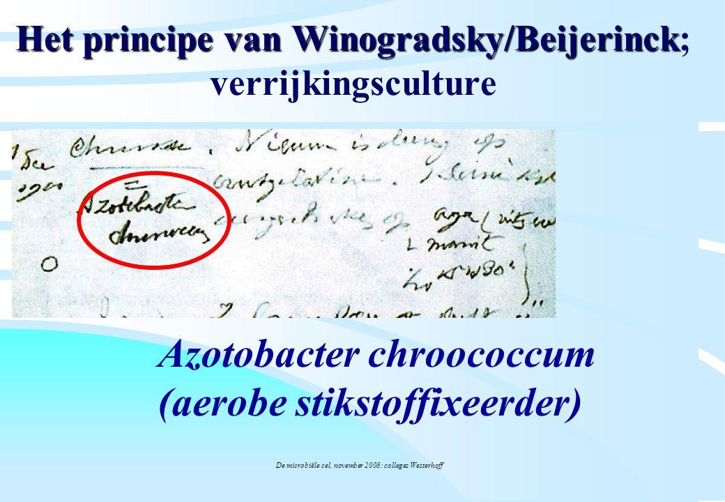 Het principe van Winogradsky/Beijerinck; verrijkingsculture