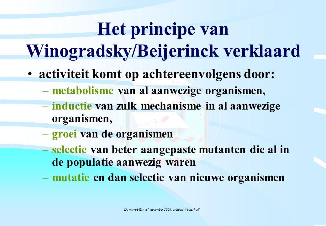 Het principe van Winogradsky/Beijerinck verklaard