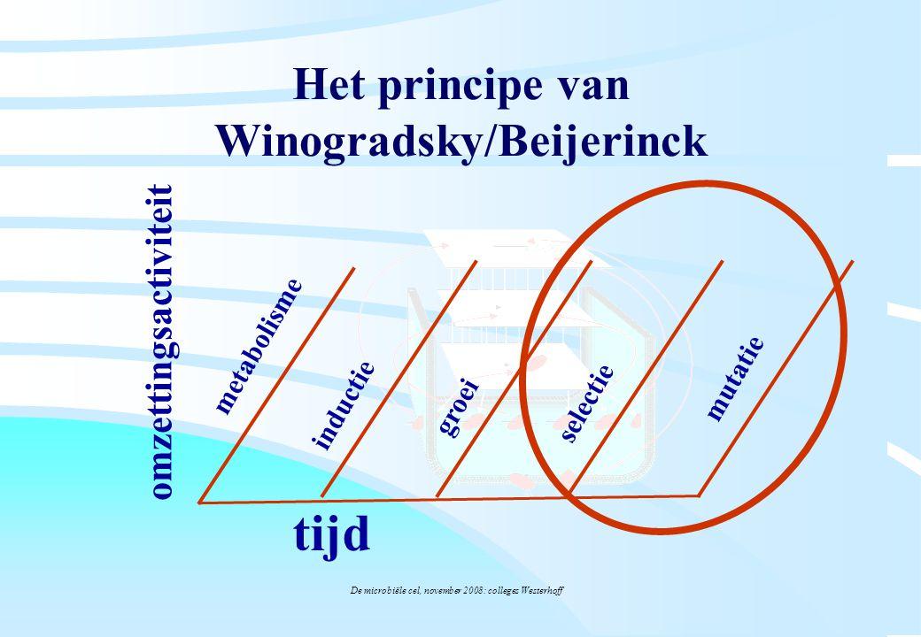 Het principe van Winogradsky/Beijerinck
