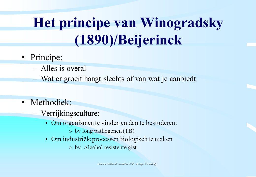 Het principe van Winogradsky (1890)/Beijerinck