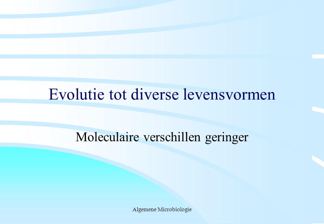 Evolutie tot diverse levensvormen