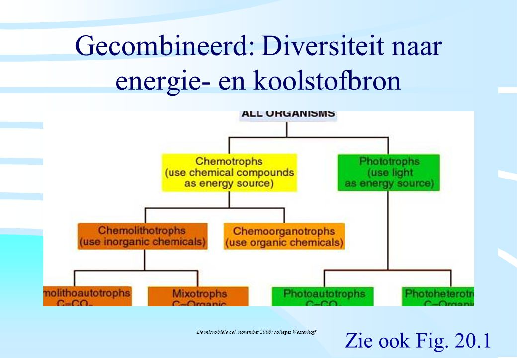 Gecombineerd: Diversiteit naar energie- en koolstofbron