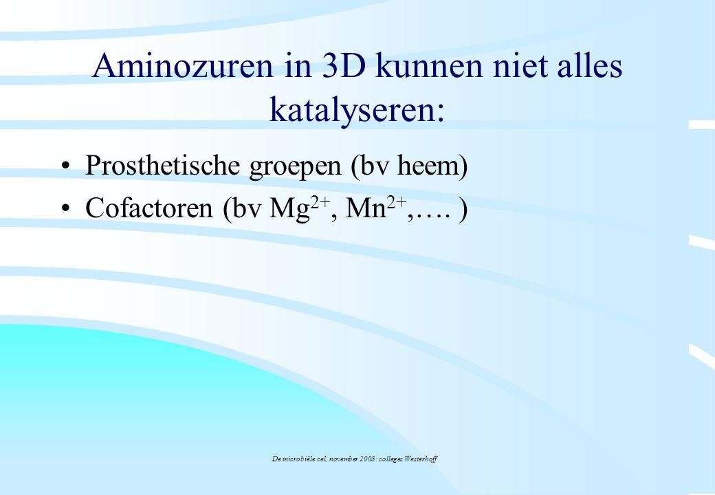 Aminozuren in 3D kunnen niet alles katalyseren: