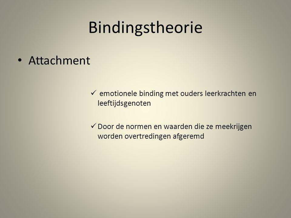 Bindingstheorie Attachment
