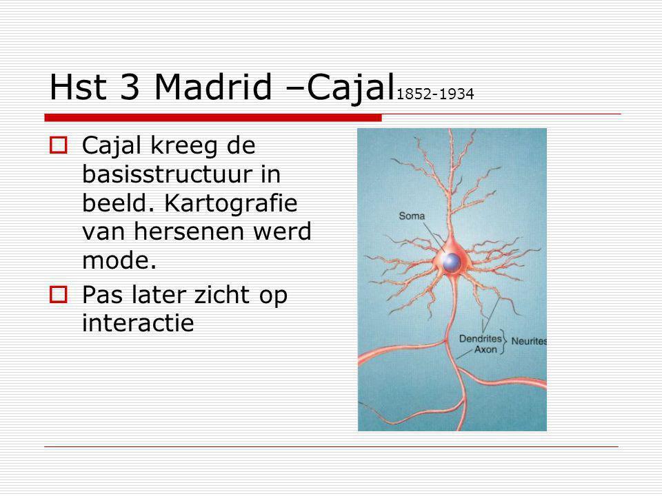 Hst 3 Madrid –Cajal1852-1934 Cajal kreeg de basisstructuur in beeld. Kartografie van hersenen werd mode.