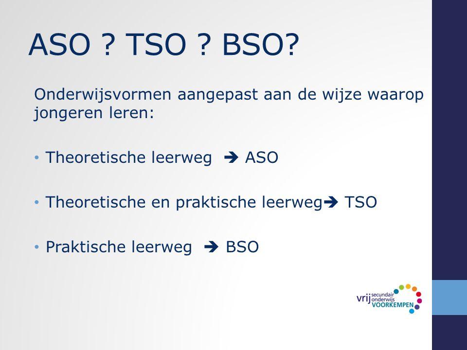 ASO TSO BSO Onderwijsvormen aangepast aan de wijze waarop jongeren leren: Theoretische leerweg  ASO.