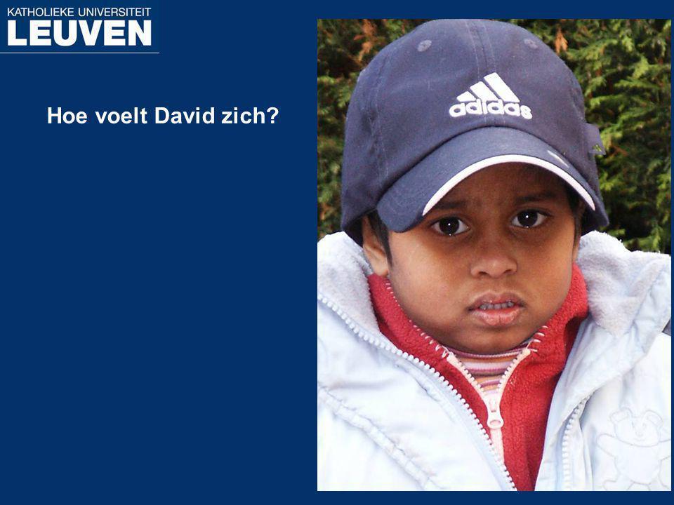 Hoe voelt David zich
