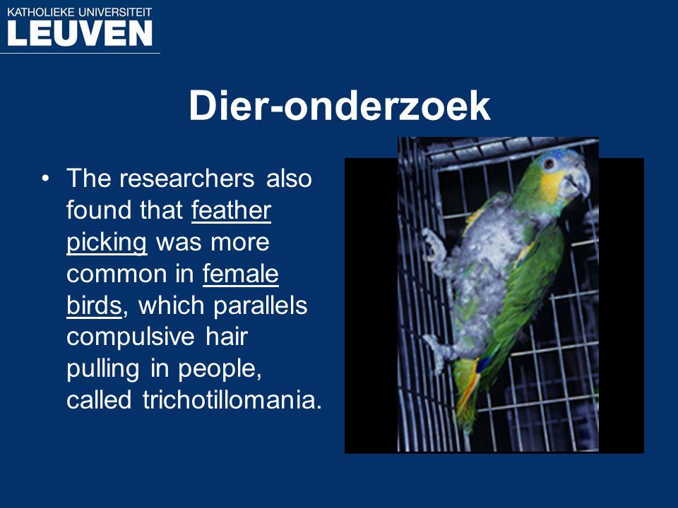 Dier-onderzoek