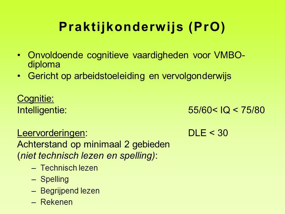 Praktijkonderwijs (PrO)