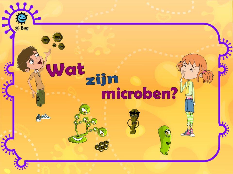 Wat zijn microben