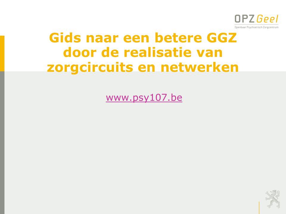 Gids naar een betere GGZ door de realisatie van zorgcircuits en netwerken