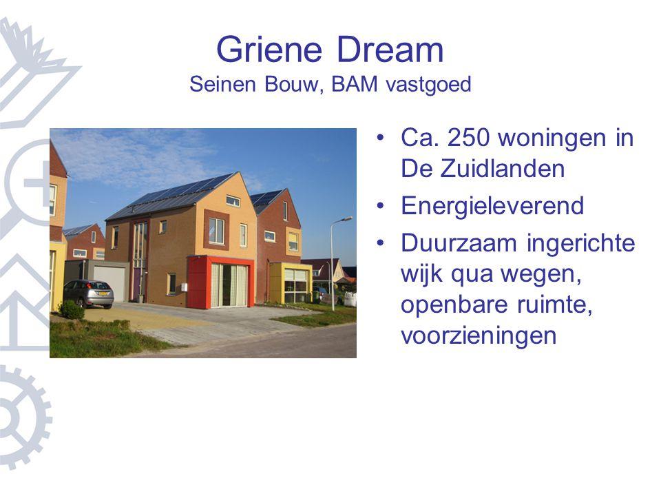 Griene Dream Seinen Bouw, BAM vastgoed