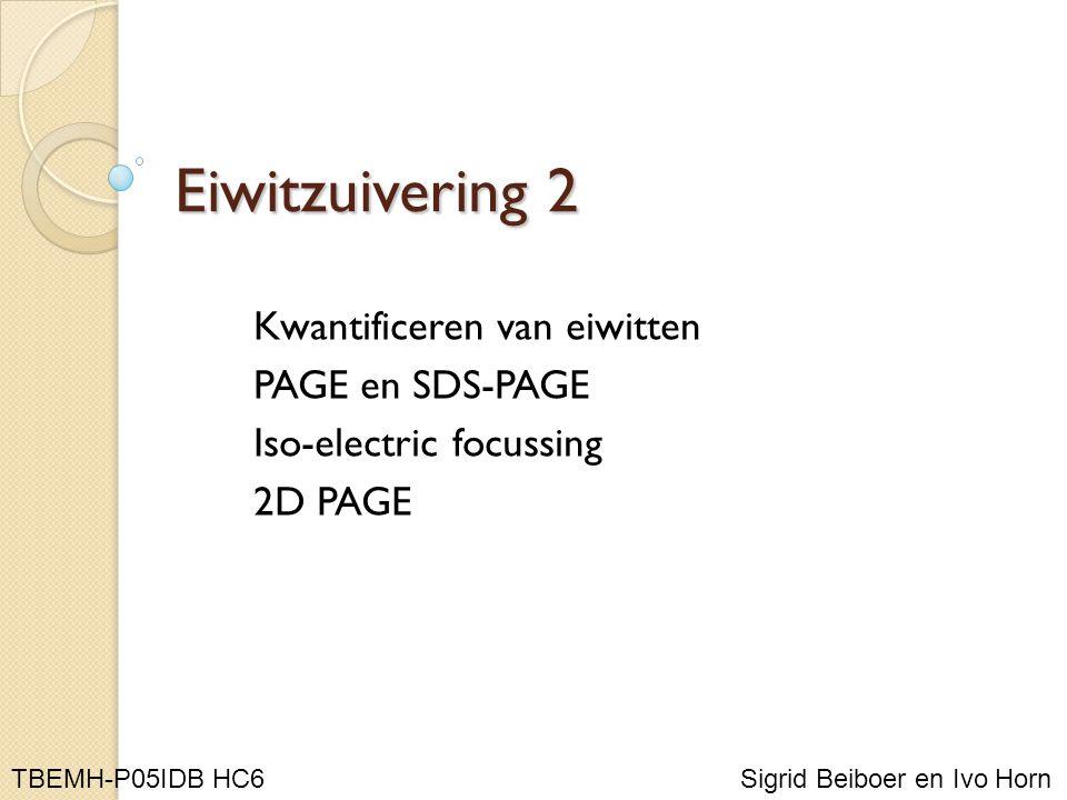 Eiwitzuivering 2 Kwantificeren van eiwitten PAGE en SDS-PAGE