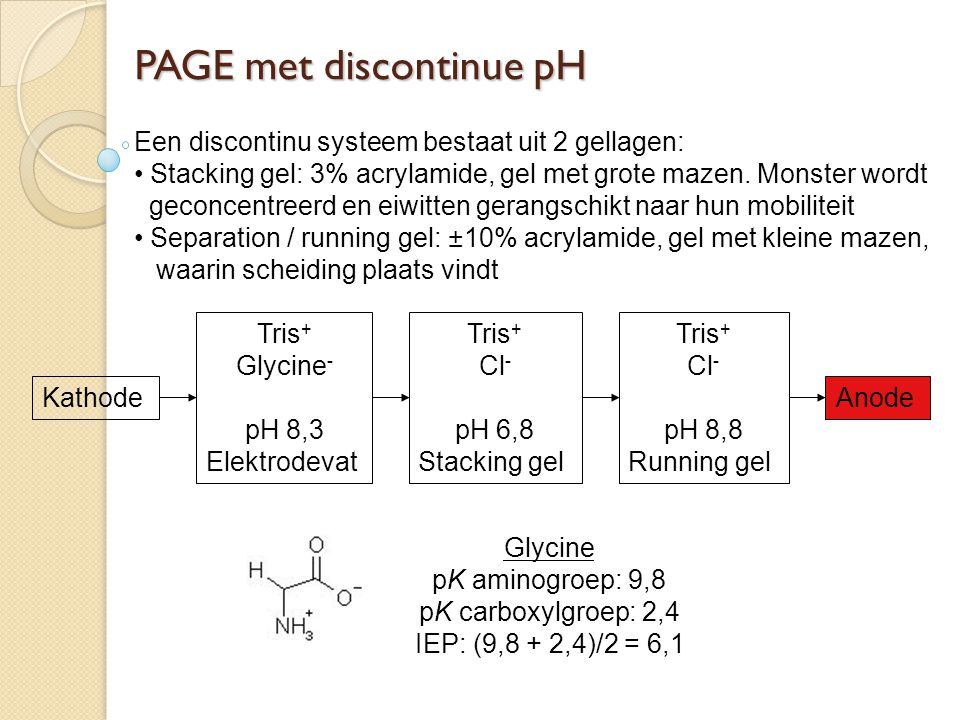 PAGE met discontinue pH