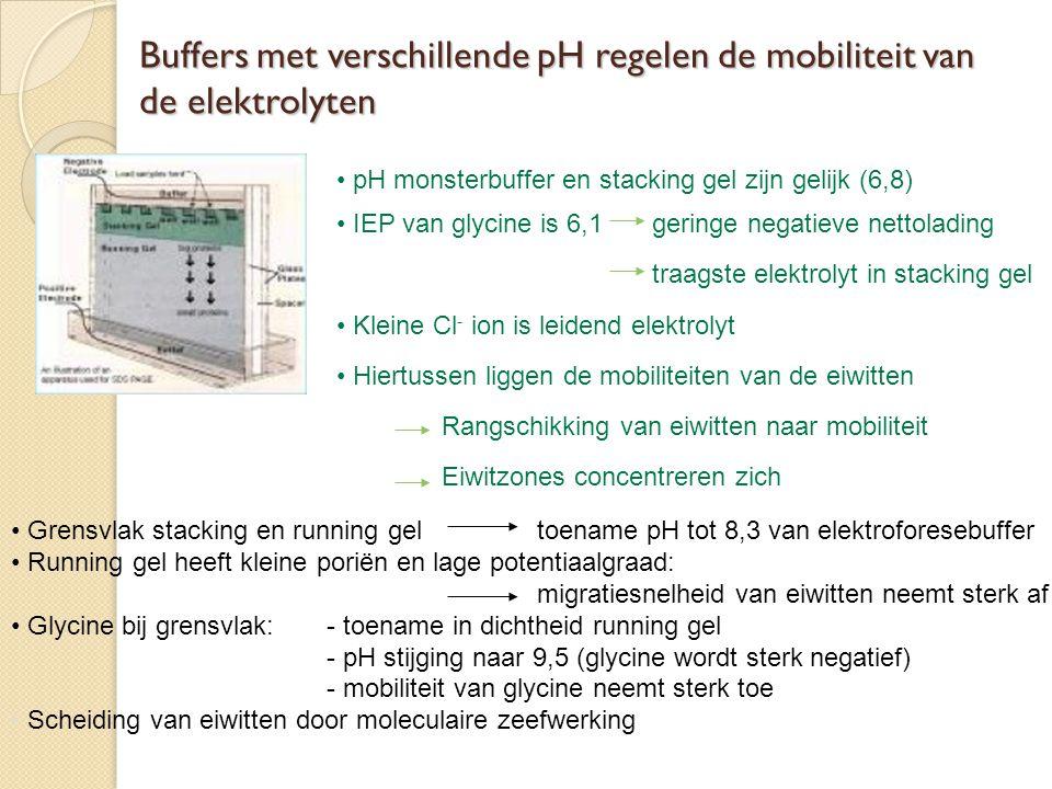 Buffers met verschillende pH regelen de mobiliteit van de elektrolyten