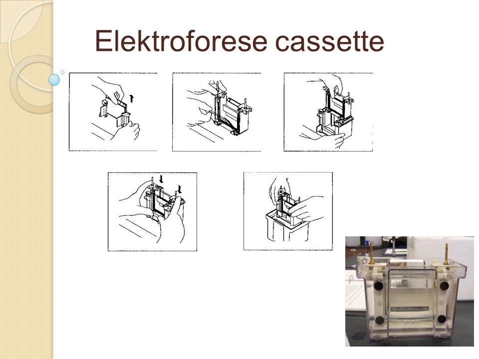 Elektroforese cassette