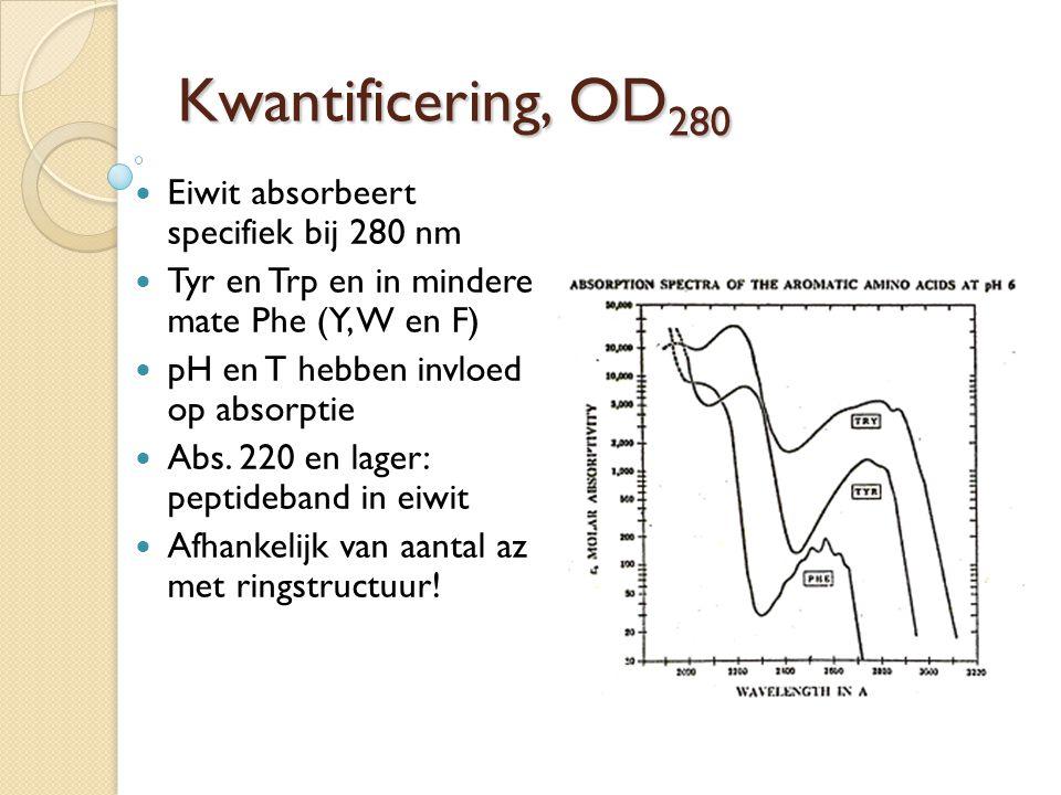 Kwantificering, OD280 Eiwit absorbeert specifiek bij 280 nm