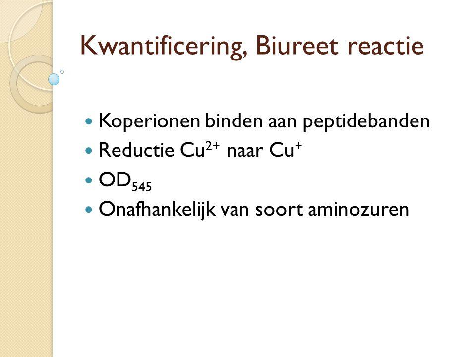 Kwantificering, Biureet reactie