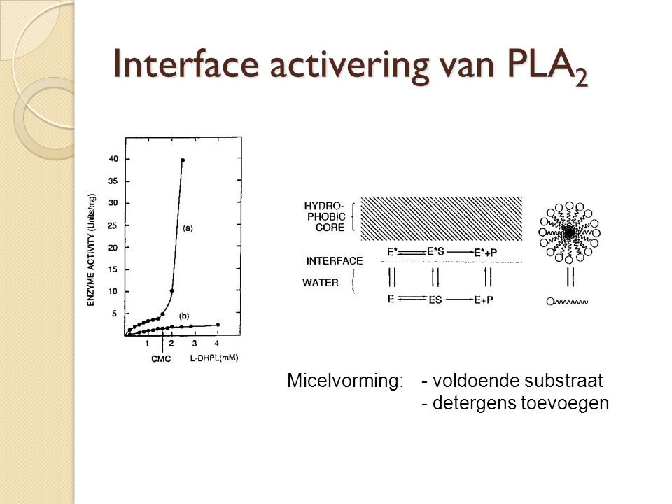 Interface activering van PLA2